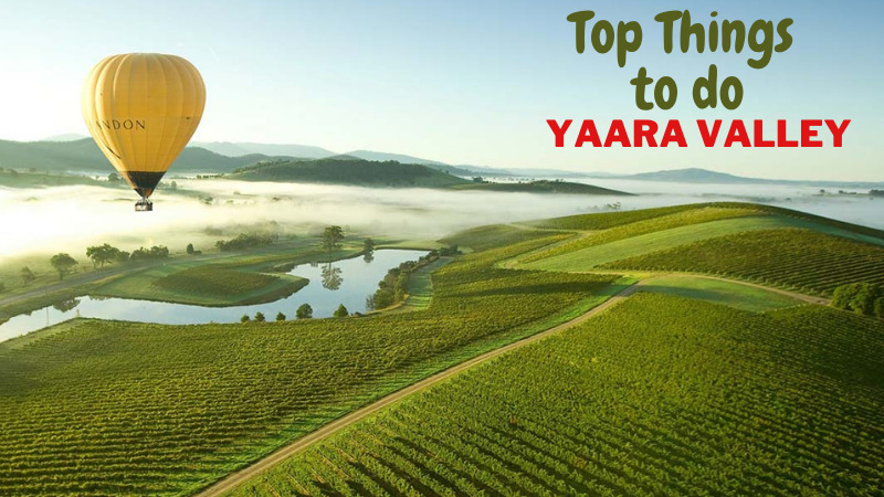 Melbourne to yarra valley Tour